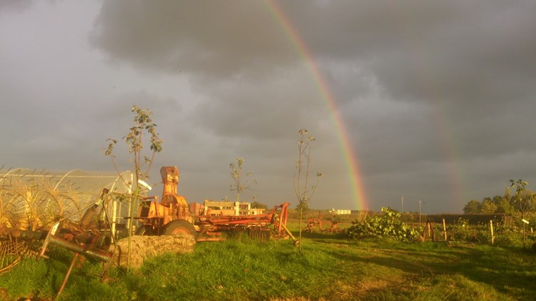 Rainbow over Jolke's land