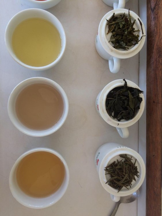Brewing different teas