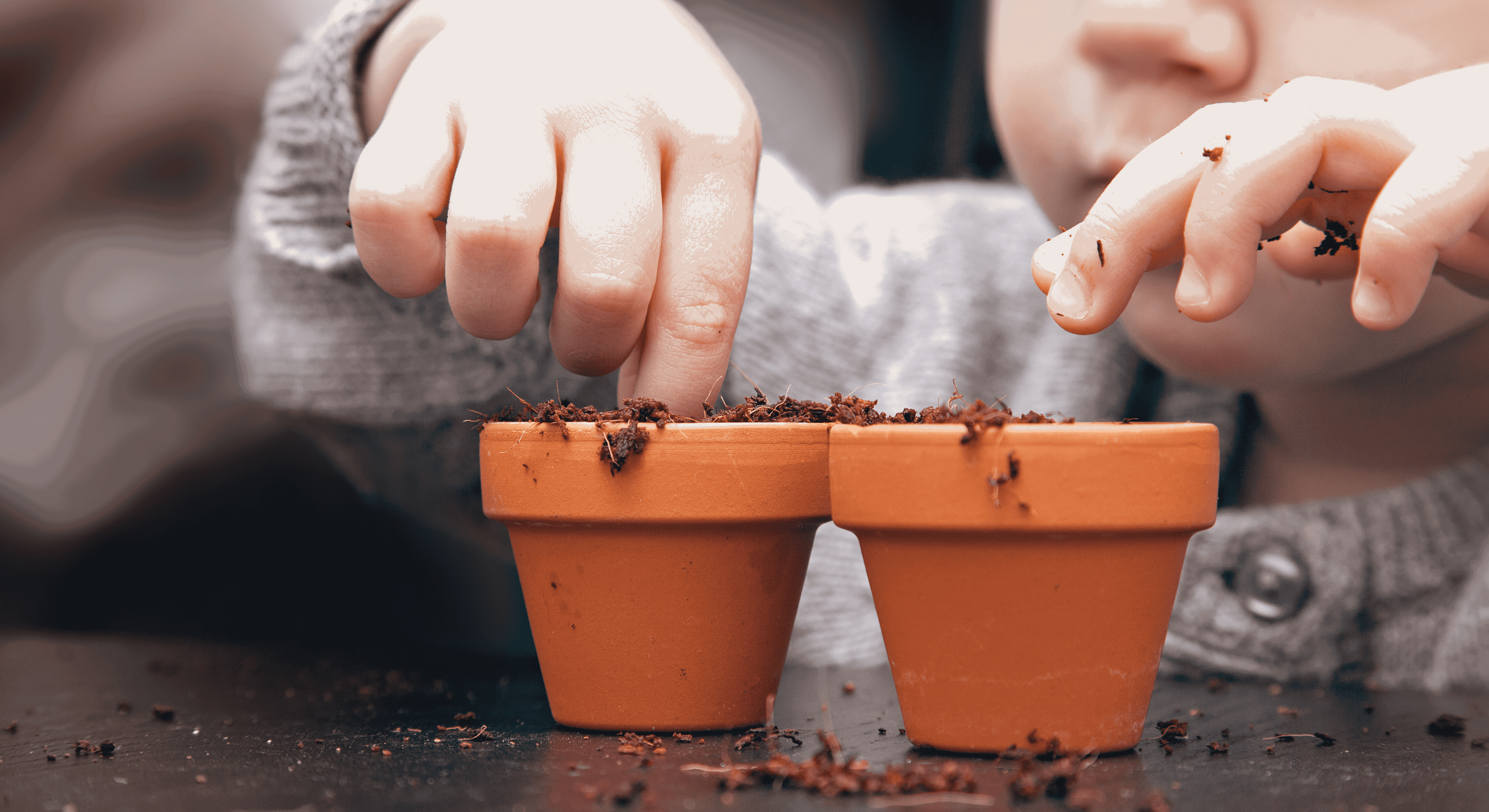 Soil Lab: Why Testing Soil?