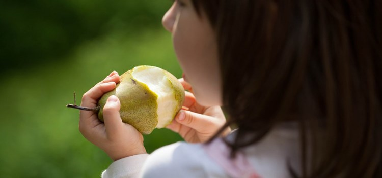 child eating a pear
