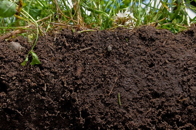 Soil, MucK and Money: Targeting Resources for Maximum Return