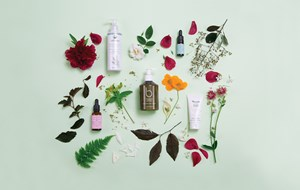 What is organic beauty?