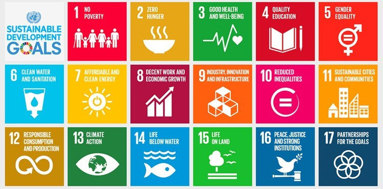 The 2017 Sustainable Development Goals