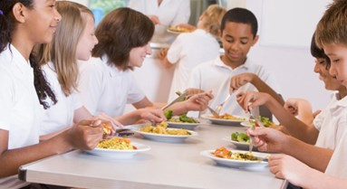 Ofsted's Flawed Report on Obesity and Healthy Eating