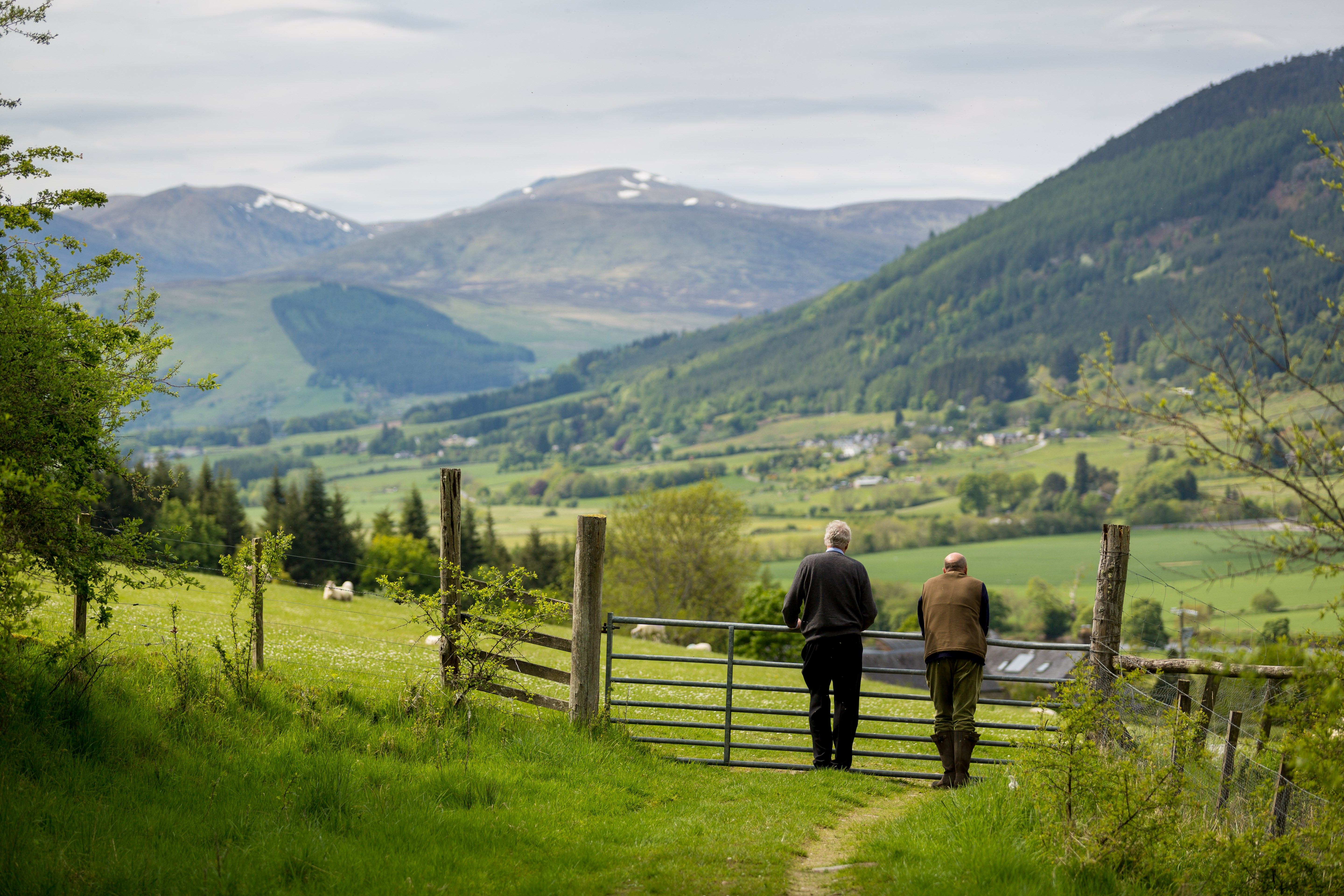 Bolfracks Estate Aberfeldy Scotland landscape with farmers and sheep - Credit Matthias Kremer.jpg (1)
