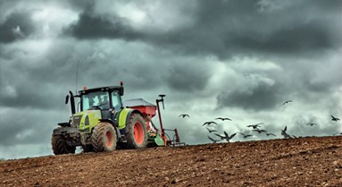 Decision day for the future of UK food and farming