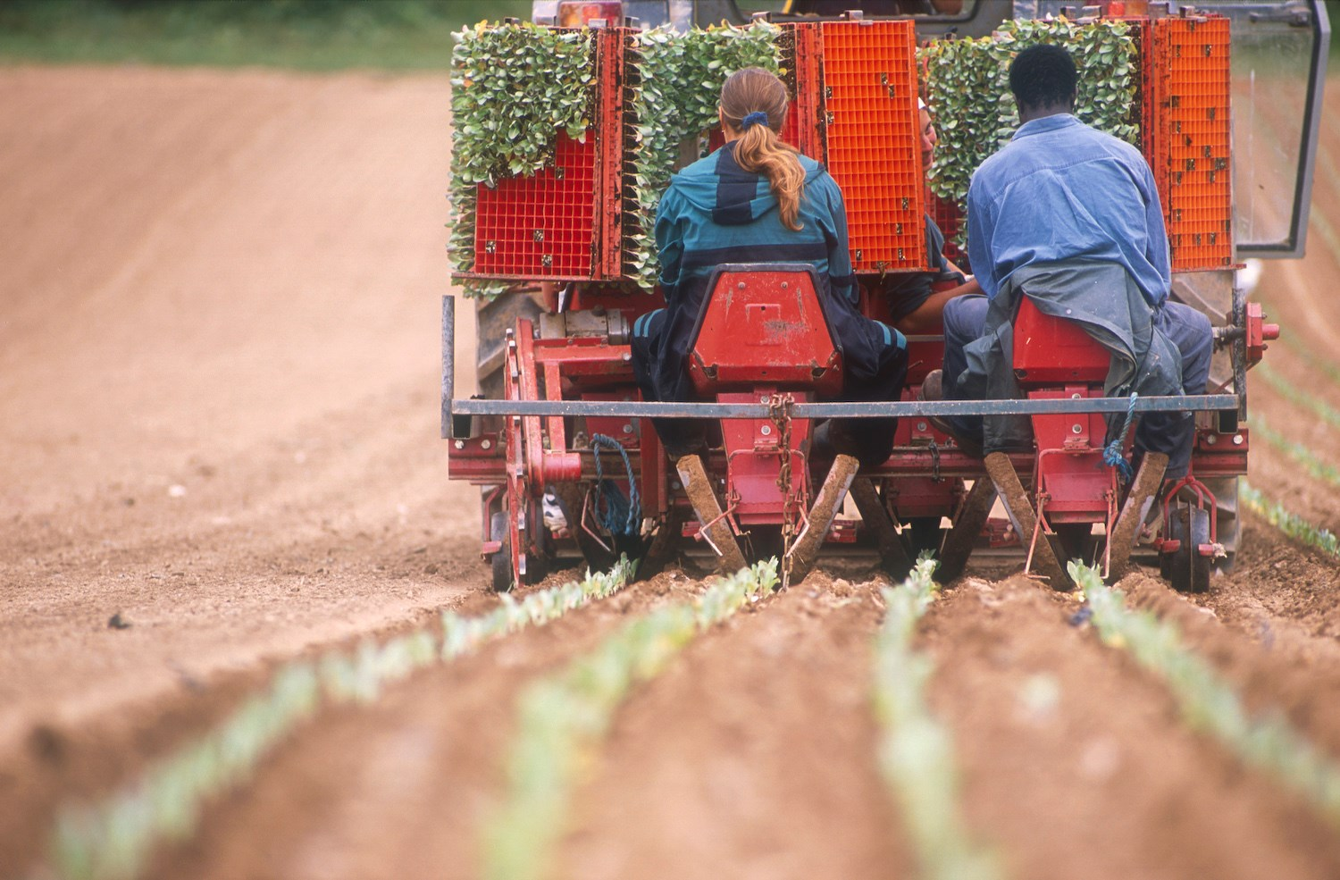 The Government has high aims for future farming policy - organic farming is already delivering them