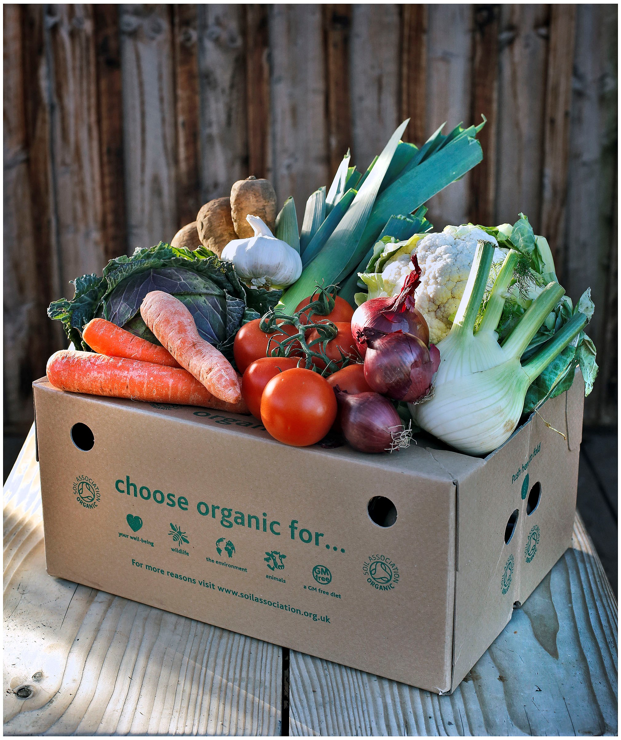 close up veg box.jpg