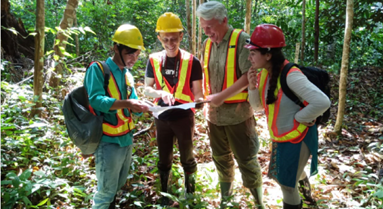 Borneo Forest Management Witness Audit