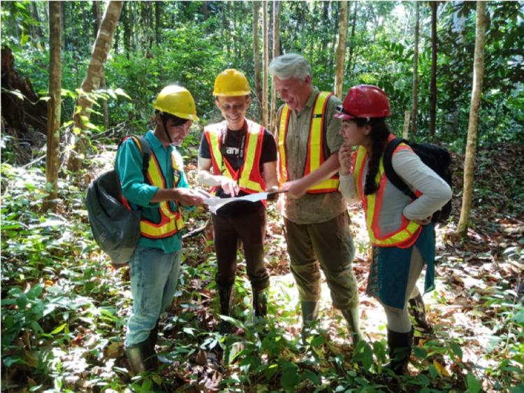 Audit team and  Forestry team members, Sonia Nayar and Andy Grundy, hard at work in forest in Borneo
