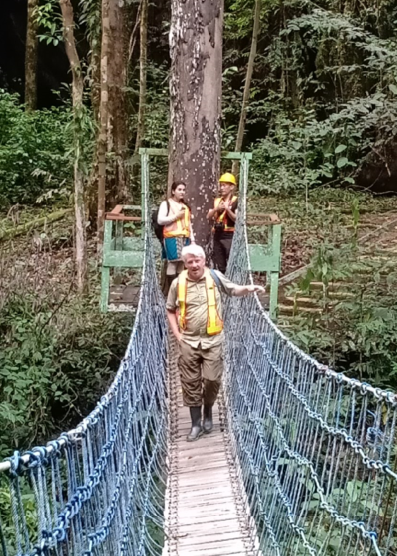 Forestry team member, Andy Grundy crossing a rope bridge in a forest, as Sonia Nayar looks on