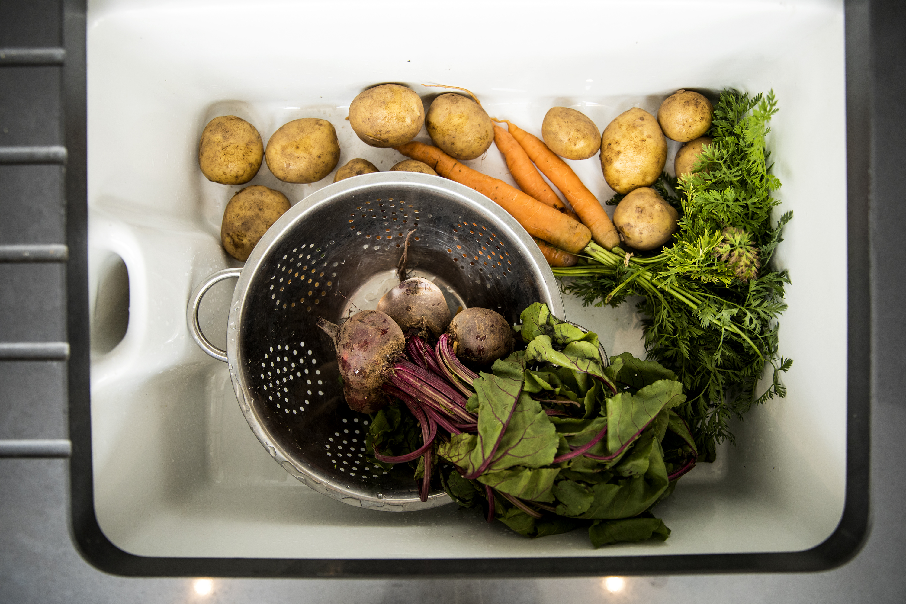 sink full of fresh seasonal veg