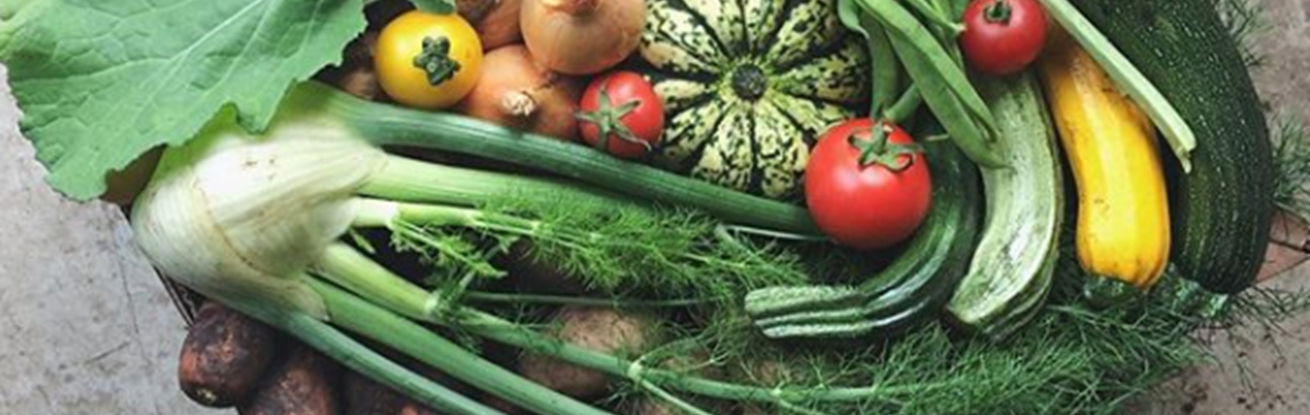 Coronavirus: how Argyll and Bute Council's focus on fresh and local food kept communities fed