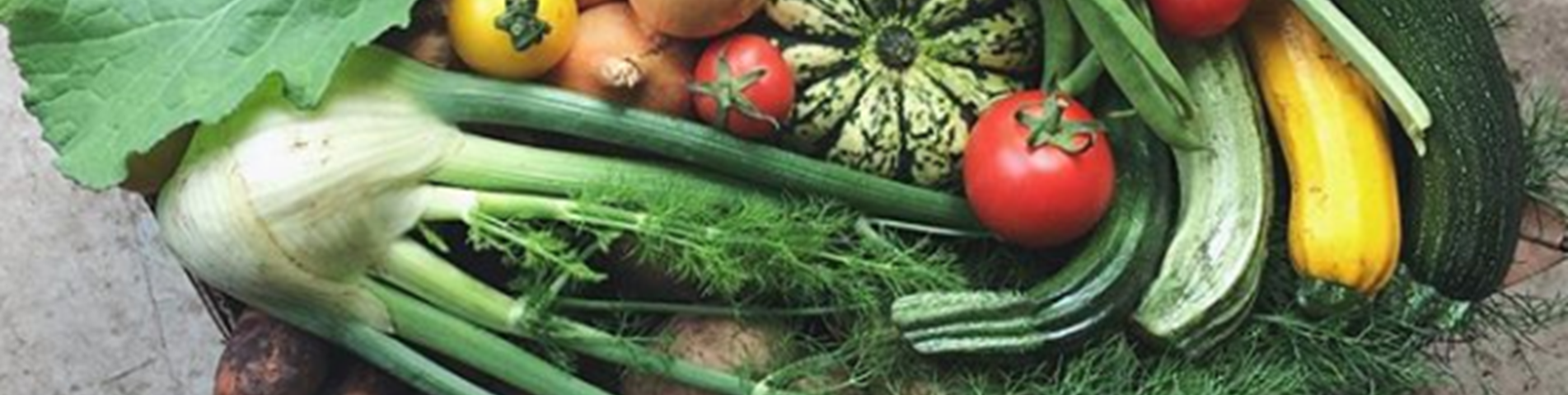 Veg box - instagram crop.png