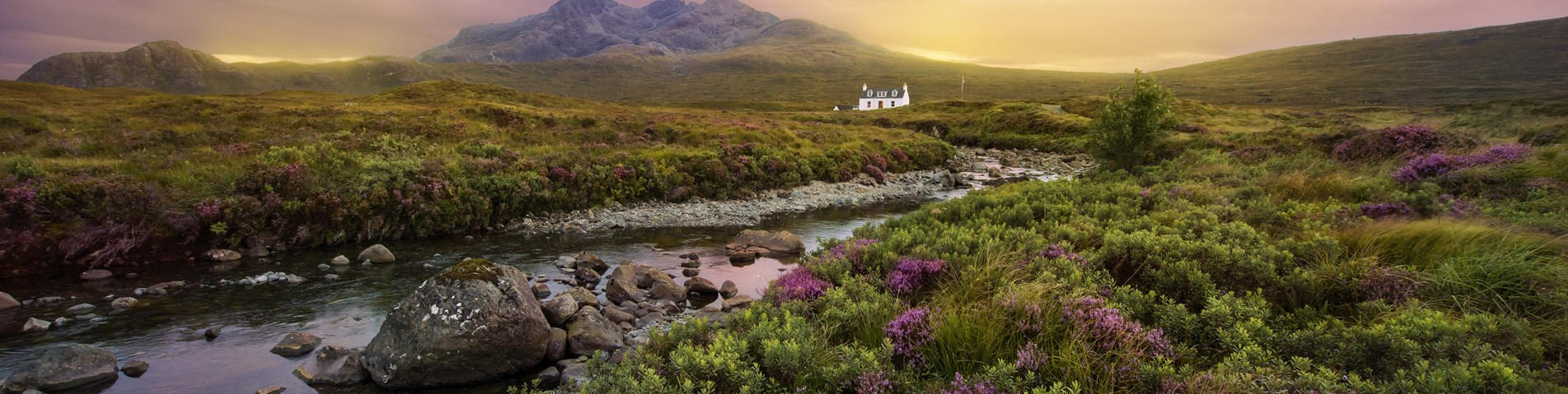 Glen with mountain heather and River Sligachan - Shutterstock.jpg
