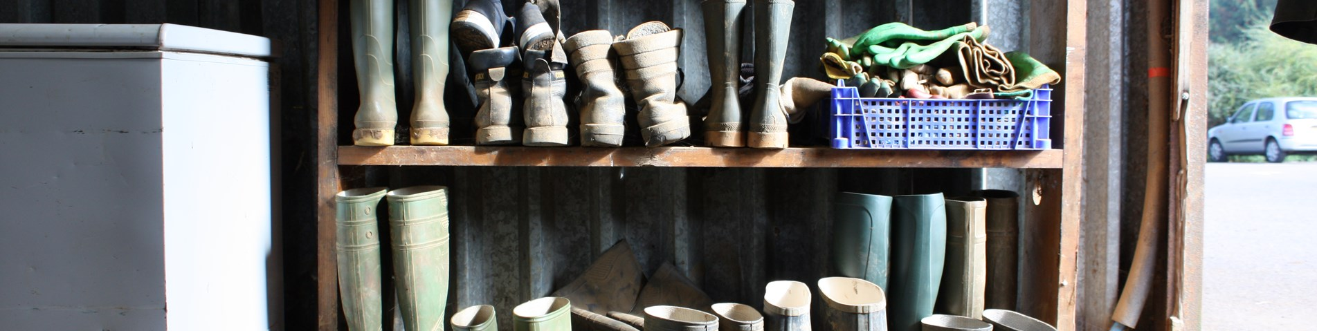 Wellies and shoes on rack