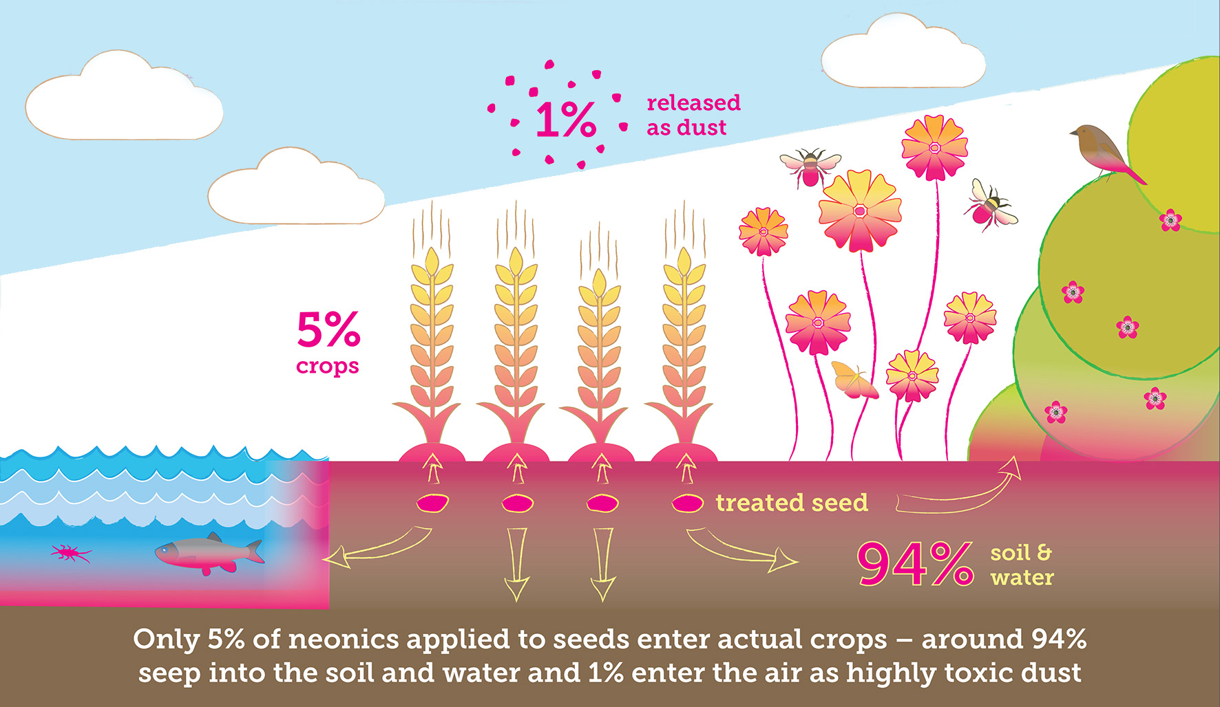 Only 5% of neonics applied to seeds enter actual crops