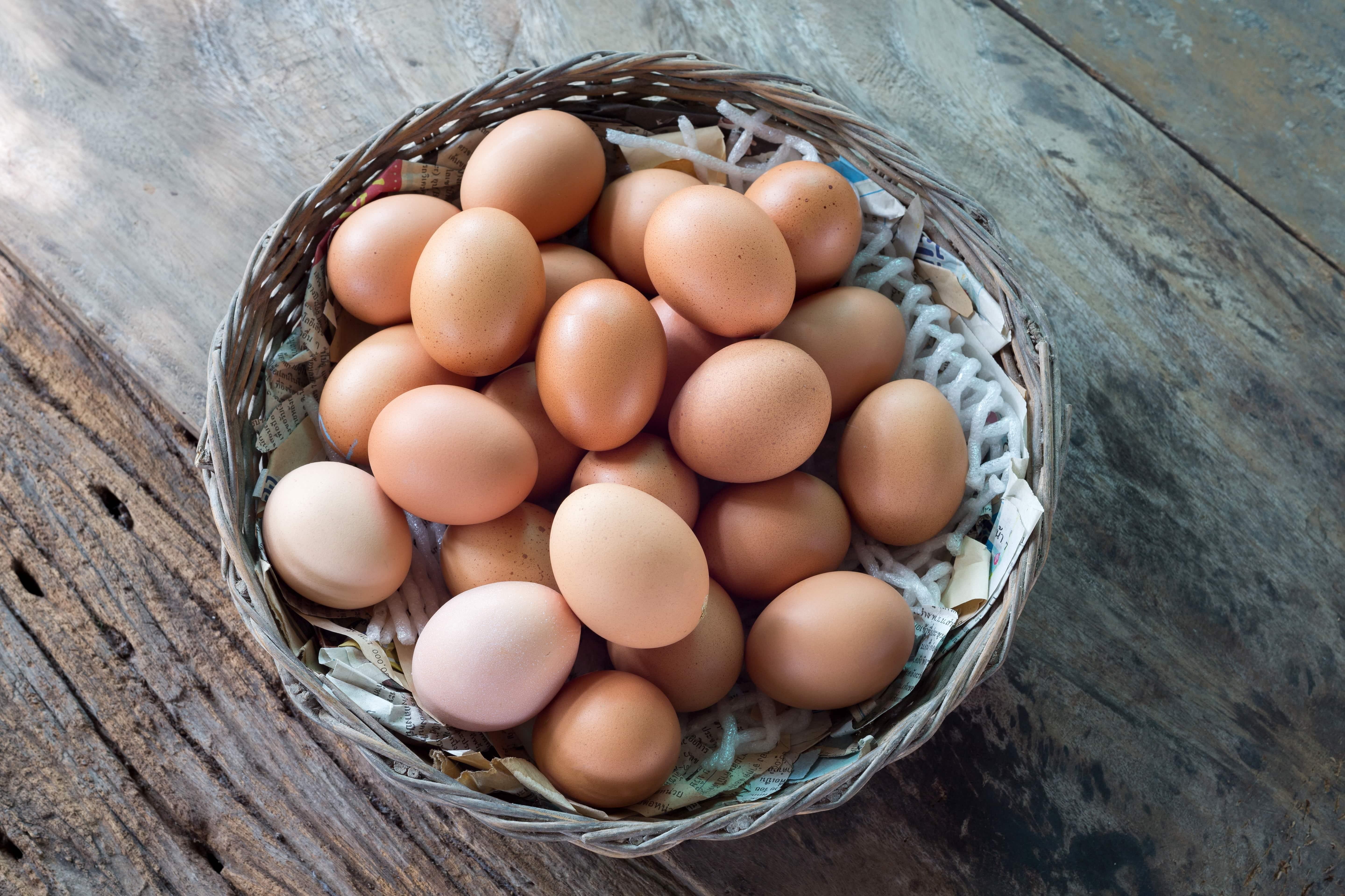 Fipronil & Imported Eggs - The Latest News