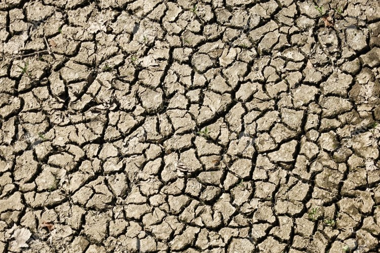 cracked and dry soil