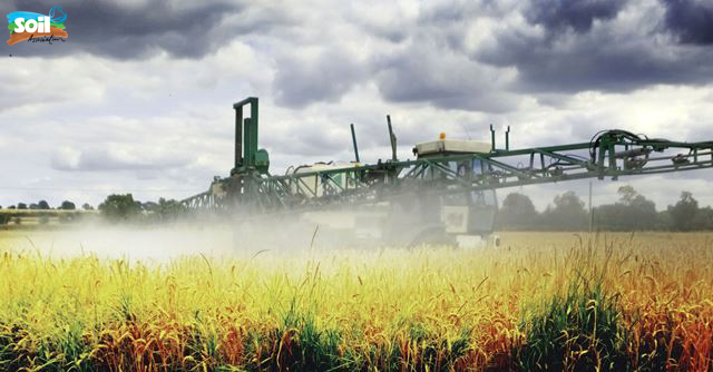 Glyphosate Weedkiller Causes Liver Disease