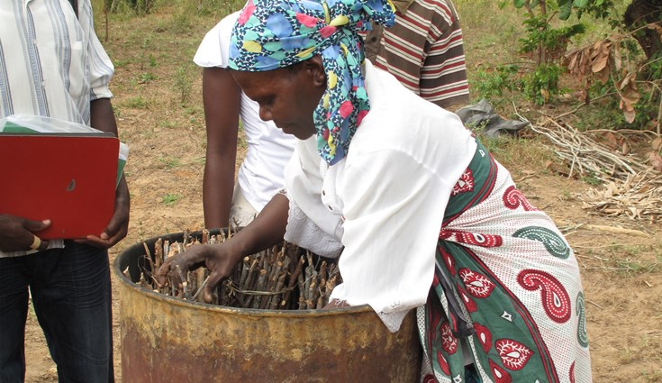 Wild Living Resource, Kenya, first achieved FSC certification in March 2009 as a Group Scheme certificate for the production of charcoal